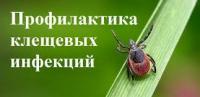 """Профилактика """"Клещевых инфекций"""""""